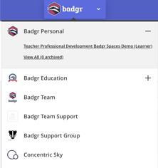 Badgr Pro Org Switcher